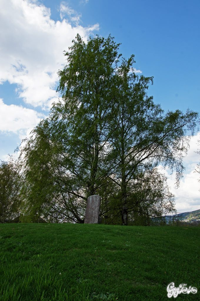 Huseby Burial Mound 1000's