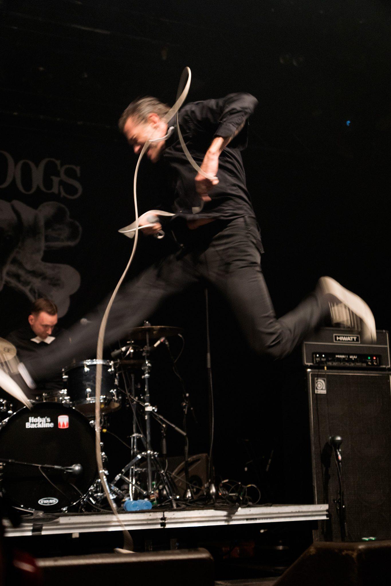 Kristopher Schau, The Dogs